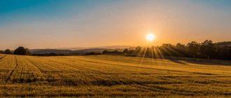 Как получить налоговый вычет при продаже земельного участка
